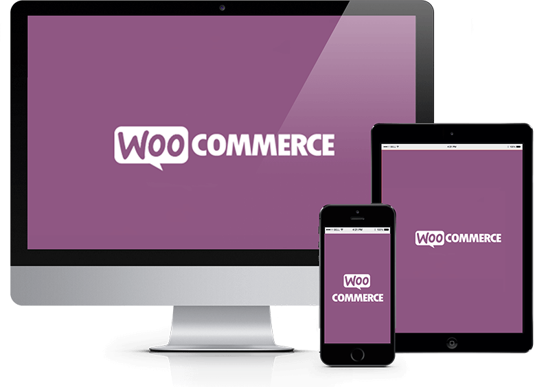 TokyoTechie provides the Best Woocommerce Development Company in India
